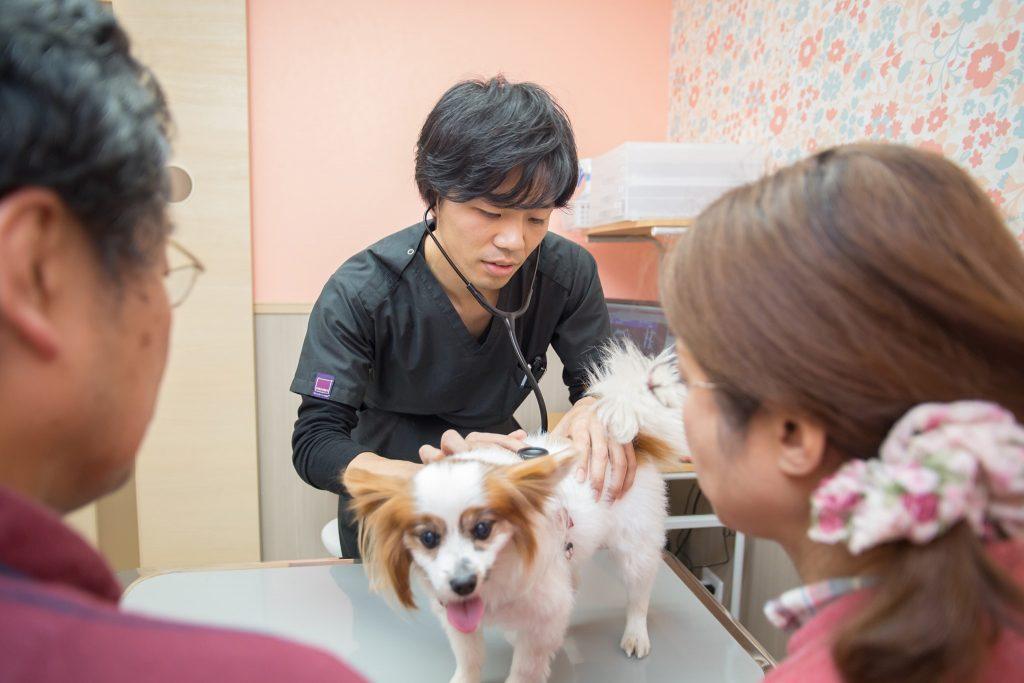 Dr. Kurachi, asesor veterinario inurepo.