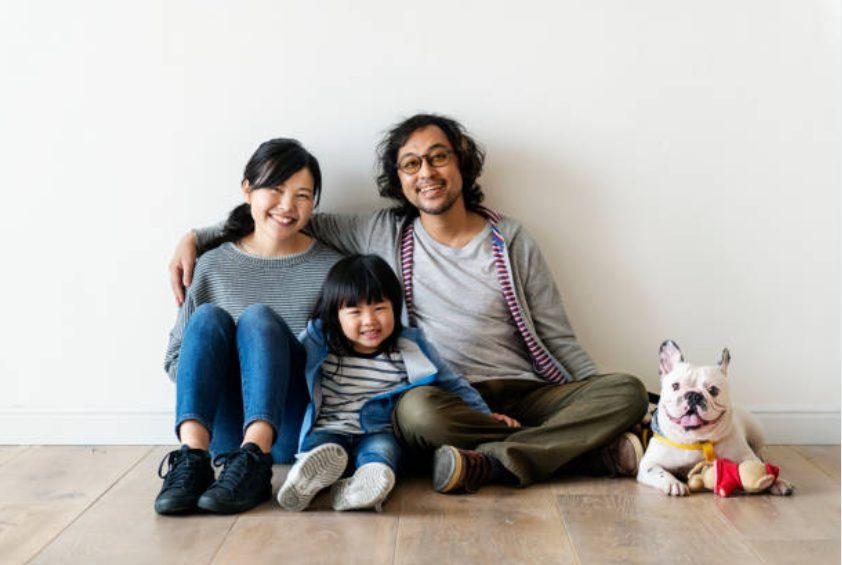 [Edição 2020] Ranking de cães indoor recomendado! Como mantê-lo no banheiro ou no medidor